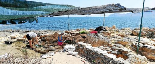 Los trabajos de excavación en la necrópolis de Son Real, en el término de Santa Margalida, prometen ser muy fructíferos.