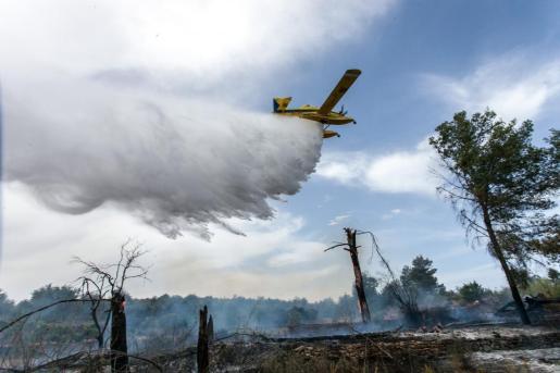 Zonas del interior de Mallorca, Menorca e Ibiza tienen riesgo muy alto o extremo de incendios.