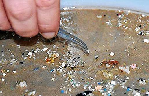 Fragmentos y microplásticos, cada vez más presentes en el medio marino.