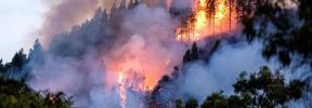 Varios miles de evacuados por el incendio de Gran Canaria