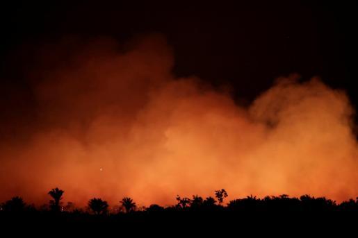 Este año los incendios forestales han aumentado un 83 % en lo que va del año en comparación con 2018.