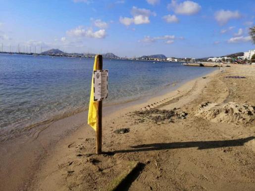 Las indicaciones que recomiendan no bañarse en el tramo de 200 metros de la playa de Albercuix permanecerán durante los próximos días hasta que se obtengan los resultados de los contraanálisis.