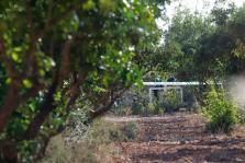 Accidente aéreo Mallorca