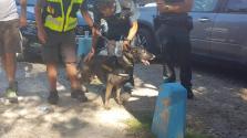 El sargento de la Guardia Civil y su perro Xena