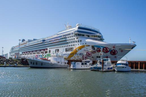 Los populares son partidarios de «ver cómo y de qué manera» se puede reducir la presión de los cruceros.