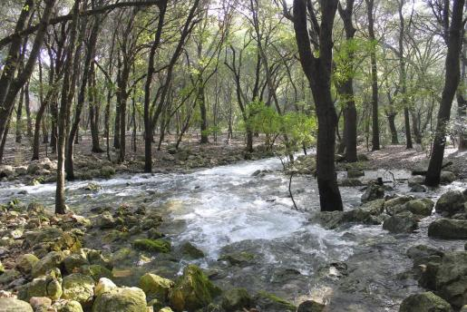 Ses Fonts Ufanes son un espacio natural protegido, con la categoría de Monumento natural.
