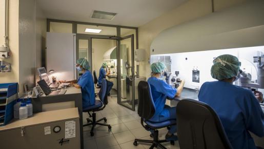 La clave del éxito de Clínicas IVI Mallorca reside en sus laboratorios de reproducción asistida.