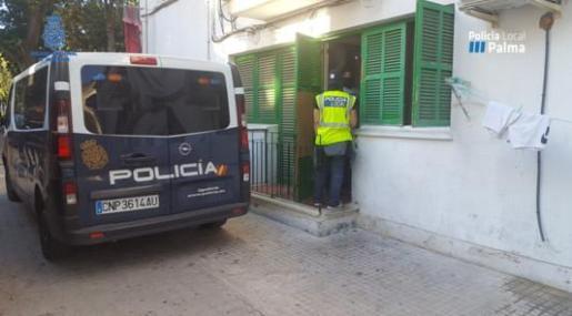 La actuación se llevó a cabo como respuesta a las demandas y quejas vecinales y dentro de los dispositivos que se vienen llevando a cabo en cada una de las barriadas de Palma.
