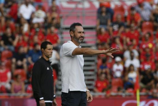 Vicente Moreno, durante el partido el Real Mallorca contra el Espanyol.