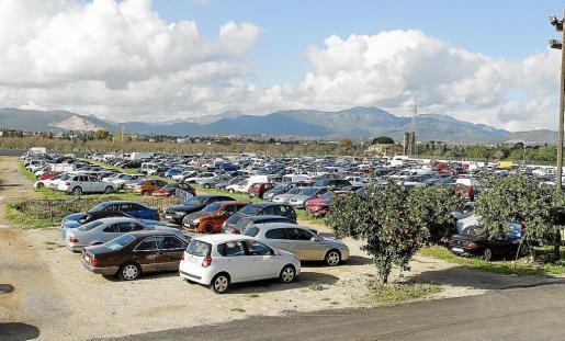 El Ayuntamiento de Palma niega irregularidades.