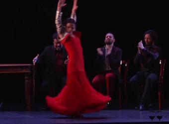 Olga Pericet inunda el Teatre Principal de Palma de flamenco con 'La espina que quiso ser flor'
