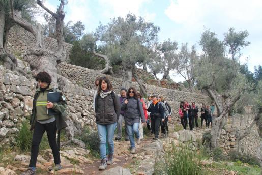 Senderistas por un camino rural de Mallorca.