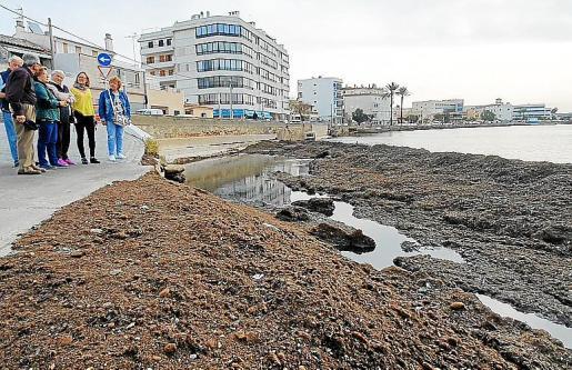 La portavoz del grupo municipal del PP, Mercedes Celeste, conversa con vecinos frente a las algas que inundan la arena.