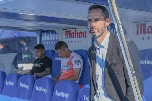 Vicente Moreno, entrenador del Real Mallorca, en el banquillo de Butarque antes del último encuentro de su equipo.