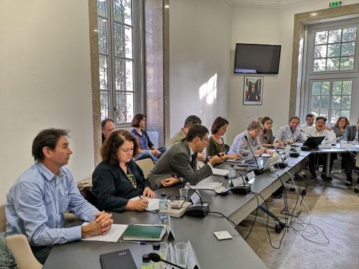 La consellera de Agricultura, Pesca y Alimientaciónn, Mae de la Concha, en las jornadas en Córcega sobre la 'Xylella fastidiosa'.