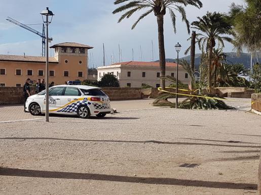 Imagen de la zona acordonada por la Policía Local de Palma.