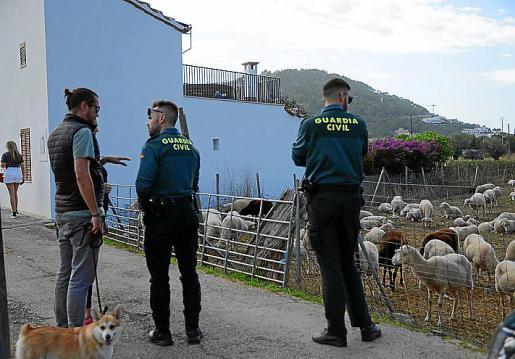 Guardia Civil investiga el caso de maltrato animal.