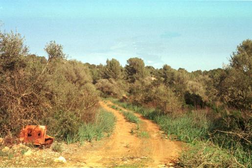 Localizado un cadáver en Puntiró.