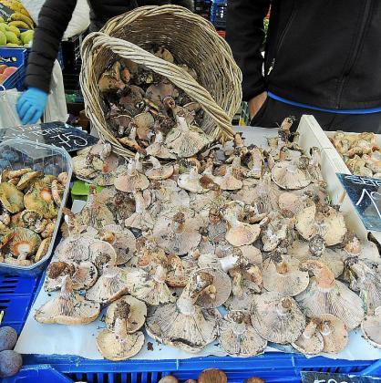 'Esclata-sangs' mallorquines en el mercado de Pere Garau.