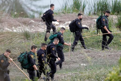 Varios miembros de la Guardia Civil participan en las batida en los alrededores de la localidad valenciana de Manuel.