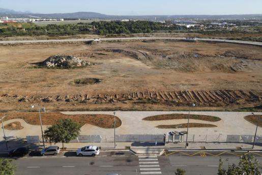 Truyol ha revelado que todas las asociaciones empresariales y vecinos representados en la reunión de la comisión de seguimiento de la Playa de Palma rechazan el proyecto.