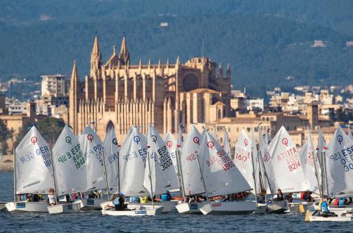 Imagen de la primera jornada de regatas del Ciutat de Palma, con los Optimist en acción.