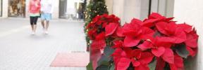 Domingos de apertura comercial para tus compras de Navidad