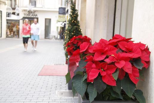 Imagen de la decoración navideña en los comercios de Palma.