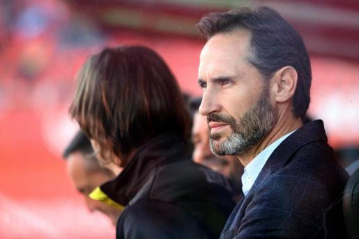 Vicente Moreno, entrenador del Real Mallorca, en el banquillo de Son Moix durante un partido.