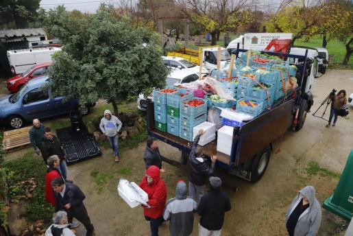 Asaja entrega alimentos frescos en Ca'n Gazà con motivo de las fiestas de Navidad.