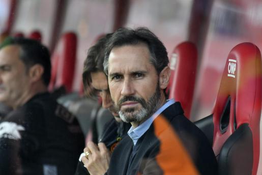 Vicente Moreno, entrenador del Real Mallorca, en el banquillo de Son Moix durante un partido de su equipo.