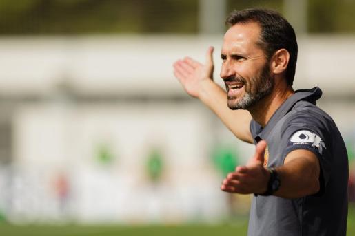 Vicente Moreno, entrenador del Real Mallorca, gesticula durante un partido de su equipo.