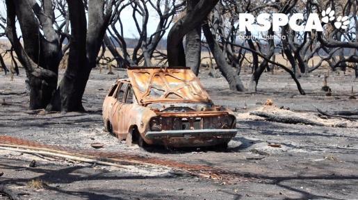 Un coche, quemado, tras el paso del fuego en Australia.