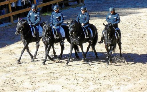 La Policía Montada de Palma, en un exhibición.