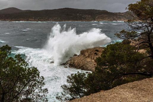 La borrasca ha pulverizado el récord en altura de olas en la isla de Sa Dragonera.