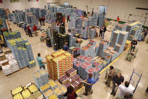 Interior de Mercapalma, desde donde se distribuyen los productos de alimentación a toda la Isla.