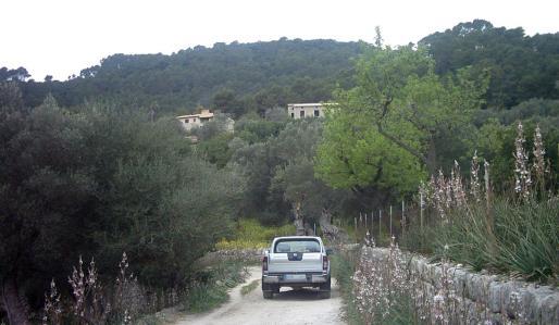 Camí de Biniatzent, que da acceso a la finca en la que se realizaron las construcciones ilegales.