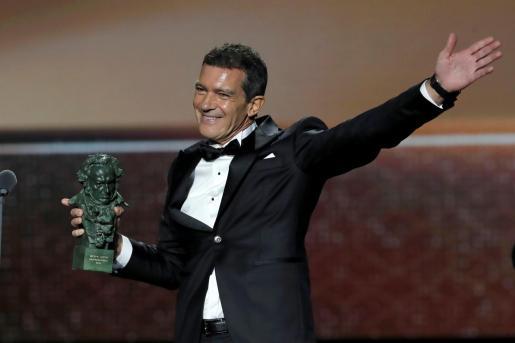 El actor Antonio Banderas recibe el Goya al mejor actor protagonista por su trabajo en 'Dolor y Gloria', durante la gala de entrega de los Premios Goya 2020.