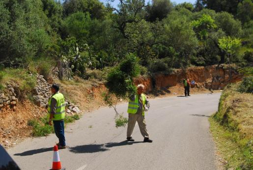 Según expuso Gonzalvo ante el pleno, la falta de mantenimiento es evidente a lo largo de toda la carretera.