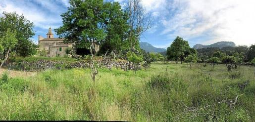 La entidad conservacionista ha destacado que este terreno, en el que se prevé la construcción de las viviendas, se encuentra cerca del Galatzó, en plena Serra de Tramuntana.