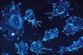 Un estudio genómico abre la posibilidad de detectar el cáncer antes de que aparezca