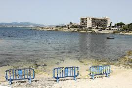 Un informe del Govern descarta un delito ambiental en los vertidos de Emaya