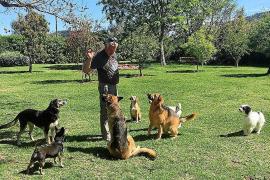 Toni Cerdà: «Han envenenado a dos de mis perras y una ha muerto»