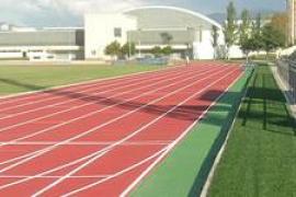 Esports destina 700 mil euros a ayudas a los deportistas destacados