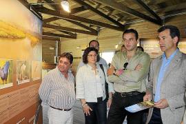 El centro de La Gola detecta 70 especies de aves en 2 años