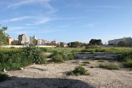 Podemos rechaza el plan del Govern para regalar suelo público a los promotores