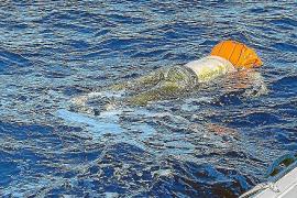 El cadáver hallado en aguas de la bahía de Palma podría ser de una patera