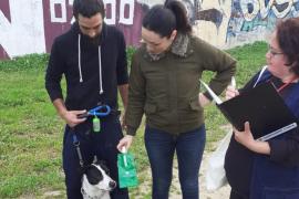 Inca reparte botellas para contrarrestar los orines de los perros