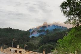 Incendio forestal en Esporles