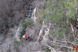 Rescate de un perro que cayó por un precipicio de 40 metros